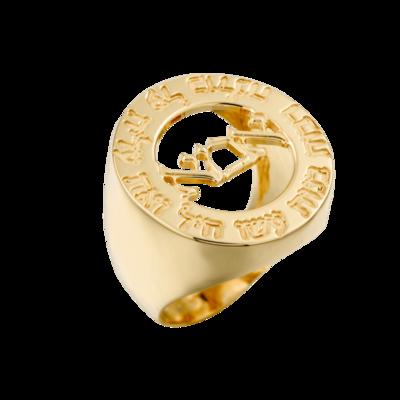 טבעת שם עגולה בעיצוב אישי עם מסגרת בעיצוב חריטה אישית