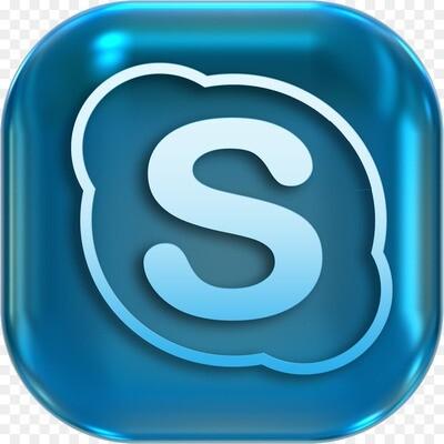 Бесплатная демонстрация программ по скайп