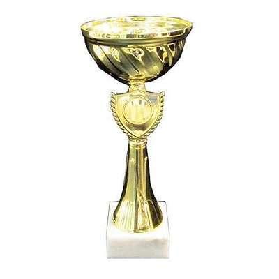 """גביע ק. 12 ג. 27.5 ס""""מ"""