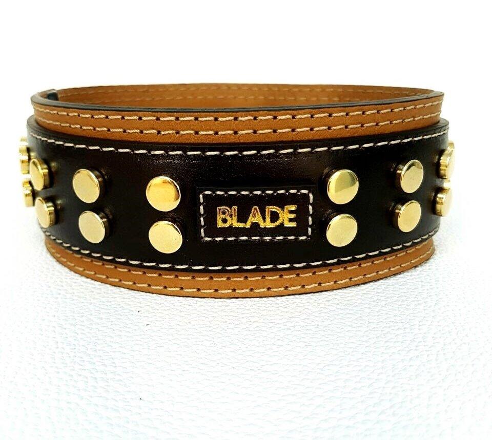 Mod. Blade