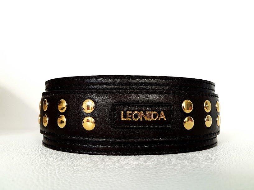 Mod. Leonida