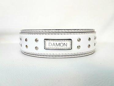 Mod. Damon2