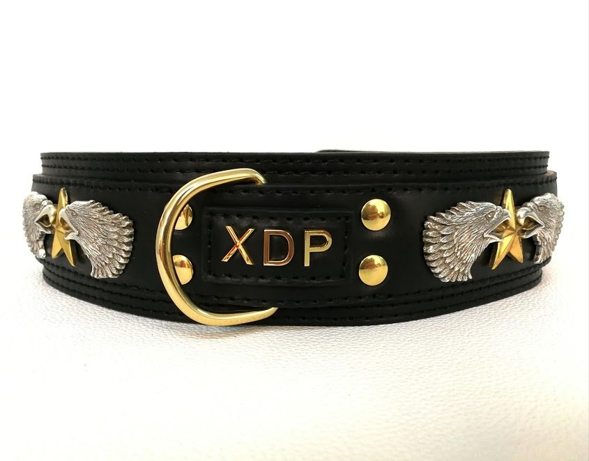 Mod. XDP