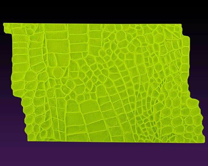 Marvelous Molds Alligator Impression Mat