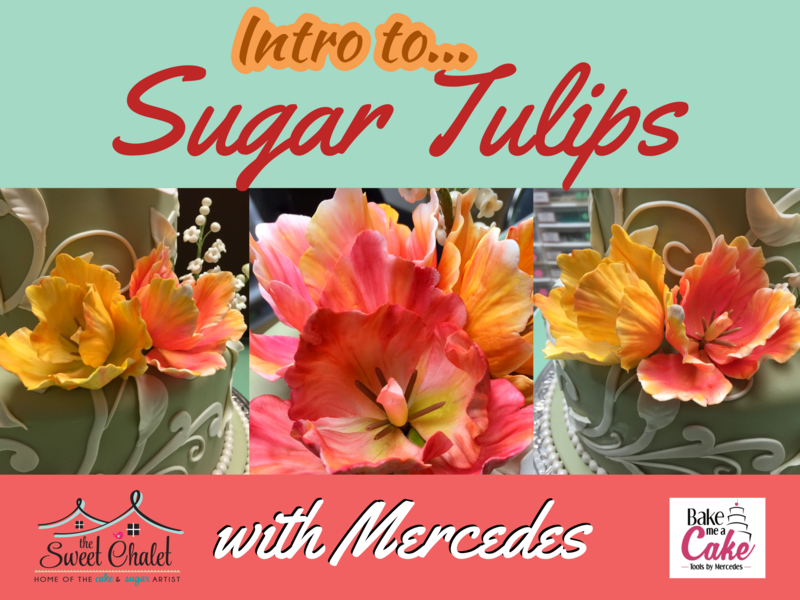 Intro to Wired Sugar Flowers: Parrot Tulips