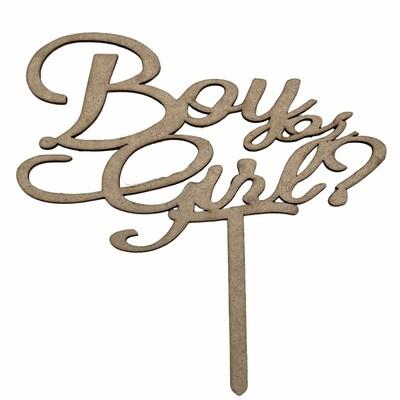 Boy or Girl? Topper
