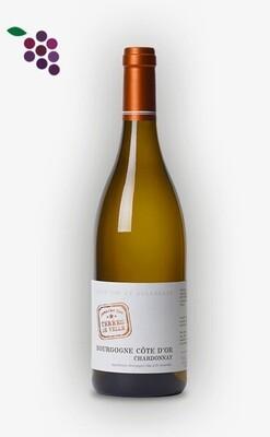 Dom. Terres de Velle Cote d'Or Chardonnay 75cl