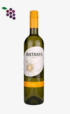 Antares Chardonnay 75cl