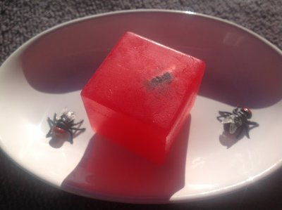Fly in my Soap 30g