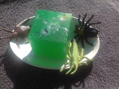 Bug in my Soap 70g