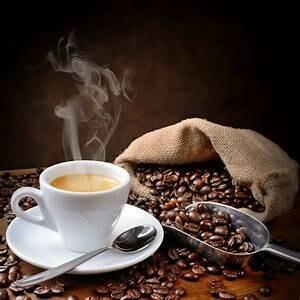 try Dark Flight our new Dark Roast COFFEE -FREE SAMPLE
