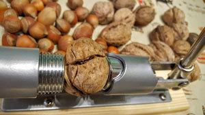 Машинка для колки орехов - универсальный орехокол