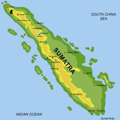 Sumatra Mandheling 1lb.