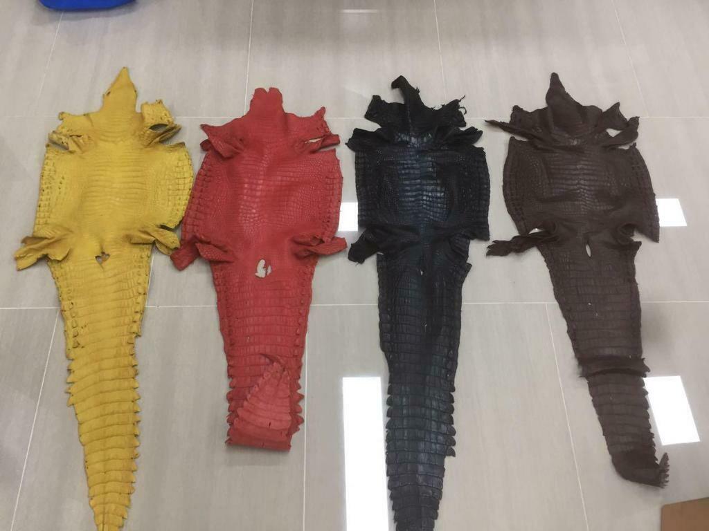 CROCODILE LEATHER - جلد التمساح