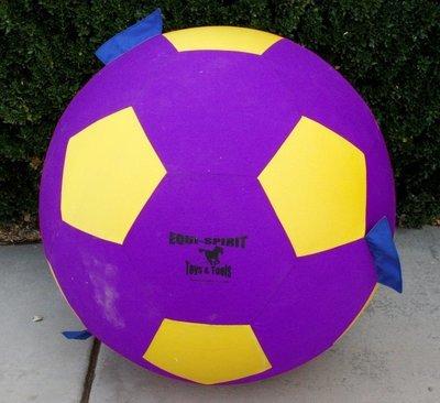 "Canine-Spirit 25"" Ultimate Grab & Toss Cordura Ball"