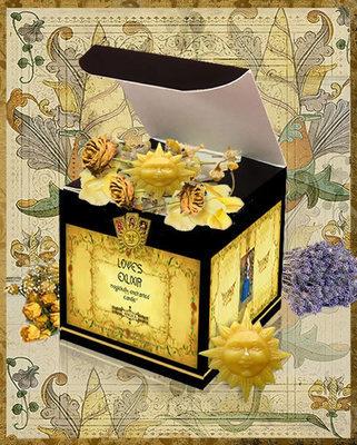 Love's Elixir - 12 Spell Candles & Spell Castings Any 1 Wish Love Spells, $349