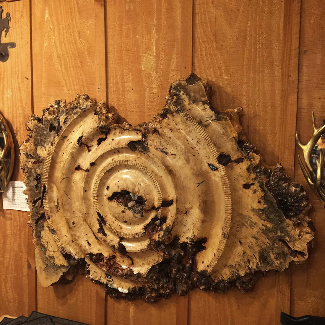 Ancient Gear Milled Carving California Buckeye