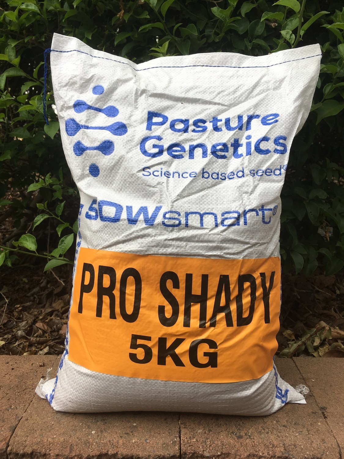 Pro-Shady Blend Seed 5kg