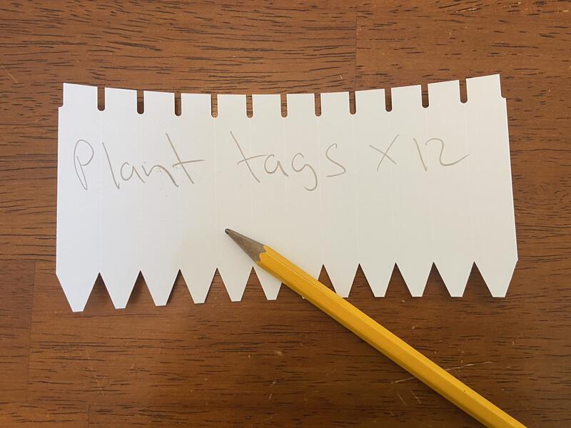 """3"""" Plant tags x 12"""