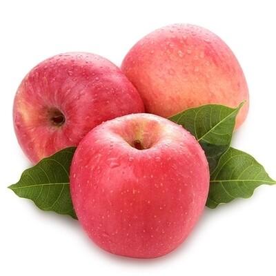 Fuji Apple (5 Count) 富士苹果 (5个)