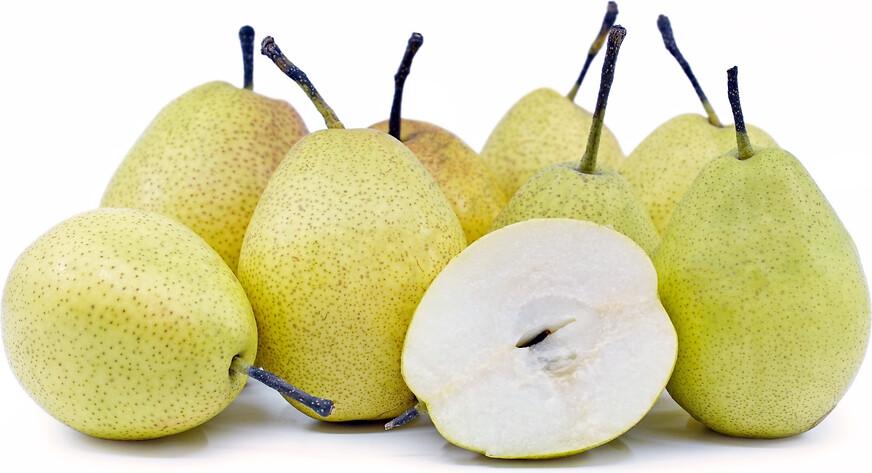 Fragrent Pear 香梨(1.8 - 2 LB)