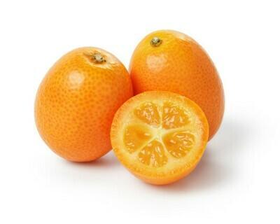 Kumquat 金桔(1LB)