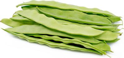 Romano Beans 扁豆 1.4-1.6 LB