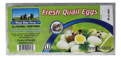 Fresh Quail Eggs 鹌鹑蛋 18 Eggs