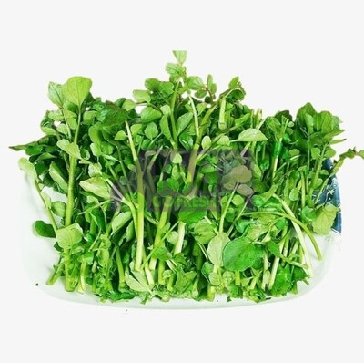 Watercress (1 Bunch) 西洋菜(一扎)