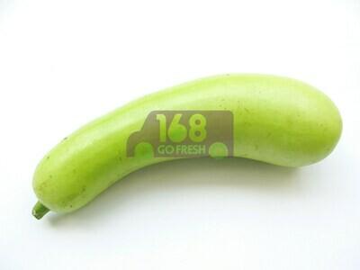Long Squash (1 Count) 蒲瓜長瓜(1条)