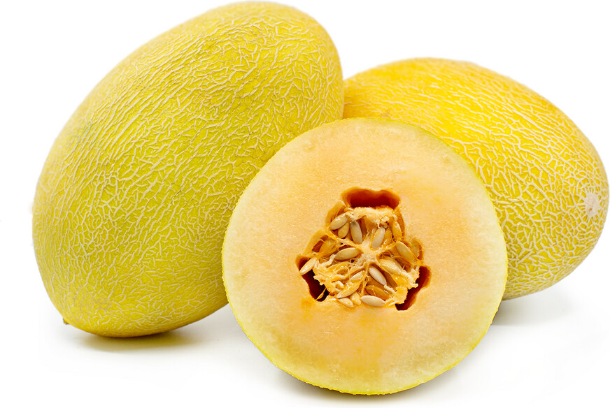 Big Hami Melon (1 Count) 新疆哈密瓜 (1个) 9-11LB