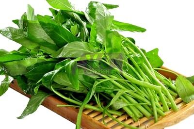 Green Ong Choy  绿空心菜(通心菜)