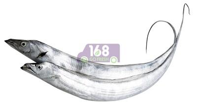 Frozen Belt Fish 急冻带鱼 一份 大约 3 LB