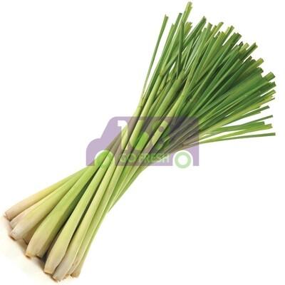 Lemon grass 香茅(0.9-1.1 LB)