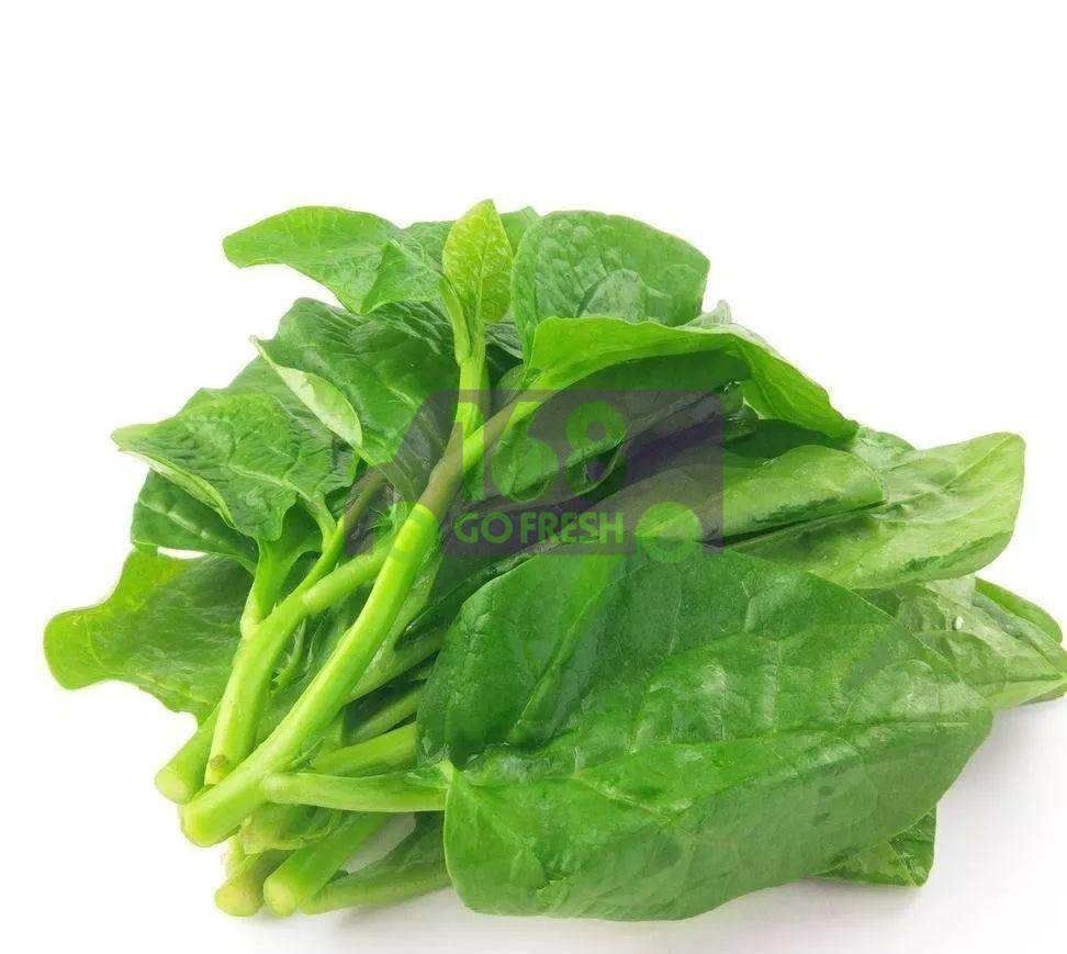 (仅限供应 星期一/四/五/六/天/)Montoi 皇宫菜(木耳菜/潺菜) 1.4 - 1.6 LB