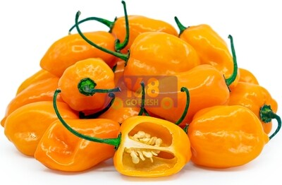Habanero Chili 墨西哥橘椒(很辣)0.4 - 0.6 LB