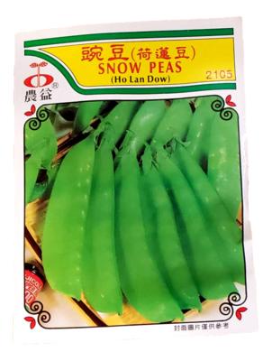 (Seed)Snow Peas(种子)豌豆(荷蓮豆)