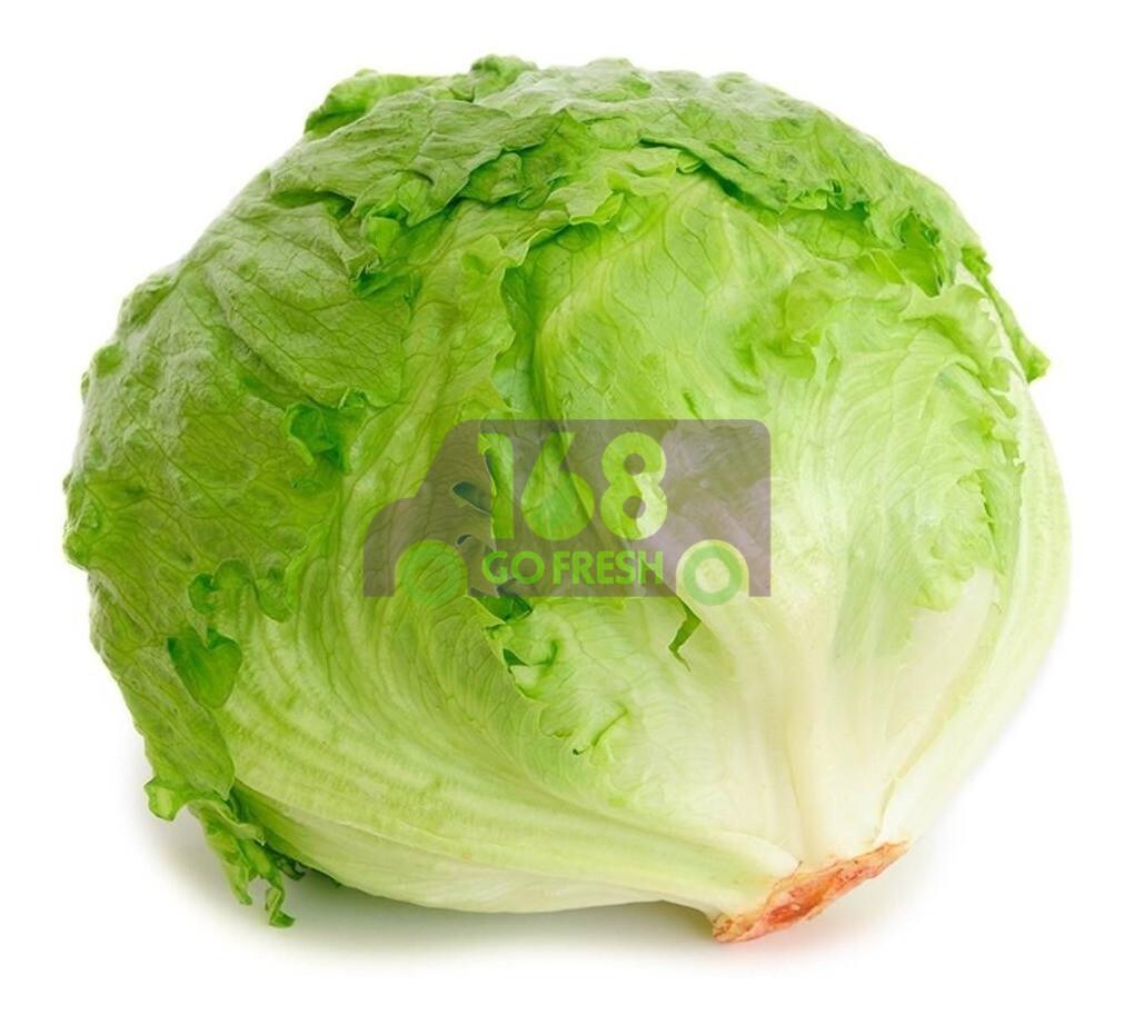 Lettuce(1 Count) 圆生菜(1个)