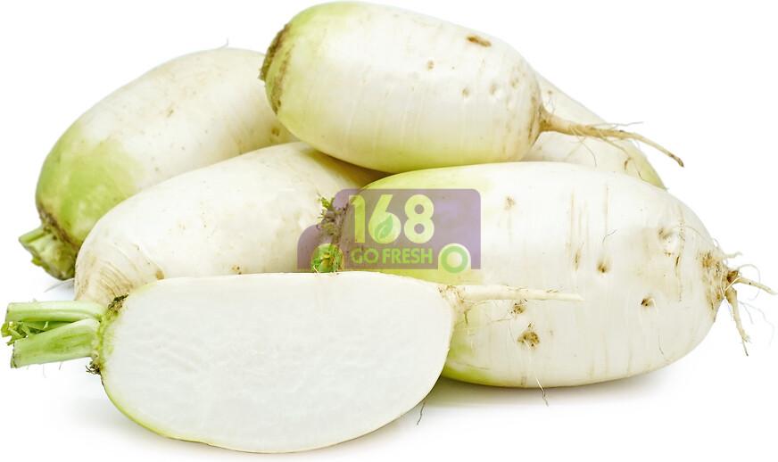 Korean radish 新鲜韩国萝卜 3.3 - 3.5 LB