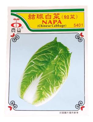 (Seed)NAPA (种子)结球白菜(绍菜)