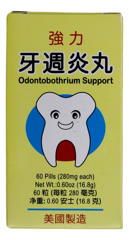 Odontobothrium  Support 强力牙周炎丸(60Pills)