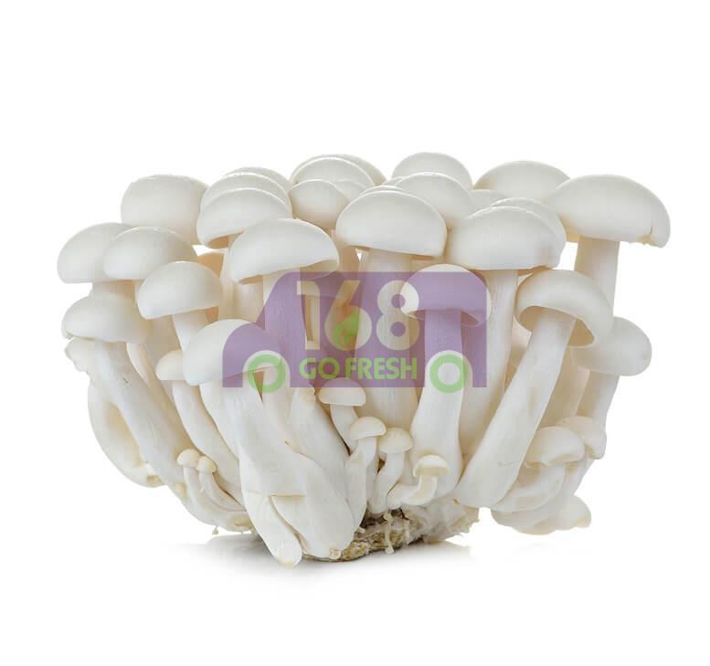 White Beech Mushroom 白玉菇