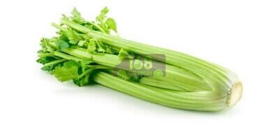 Celery 西芹菜
