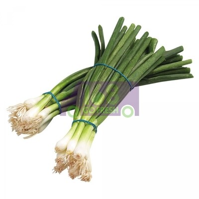 Green Onion 青葱
