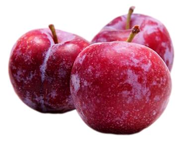 Red plum 红李(1.9-2.1LB)