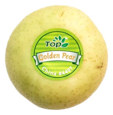 Top Golden Pears TOP 中国 黄金梨 #4407 (2个)(约1.8LB)