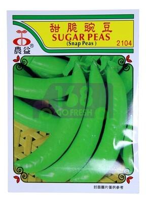 (SEED 种子)K-JAY SUGAR PEAS 甜脆豌豆 2042