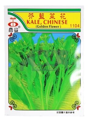(SEED 种子)Kale Chinese 芥兰菜花 1045