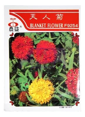 (SEED 种子)Blanket Flower F9254 天人菊F9254