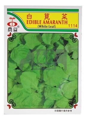 (SEED 种子)Edible Amaranth 白苋菜 1114
